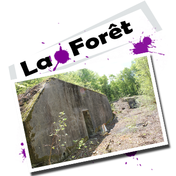 nancy paintball foret fort paint terrain