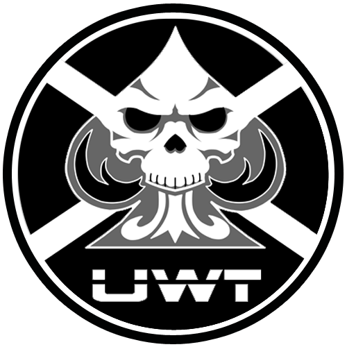 uwt_team_fort_paint